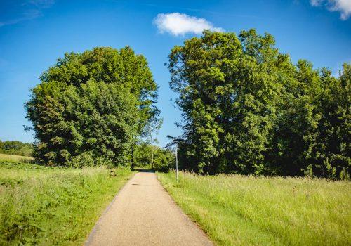 wander-und-radweg